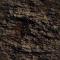 Bark 023D View