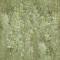 Bark 043D View