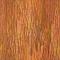 Bark 06Vorne