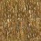 Bark 113D View