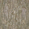Bark 123D View