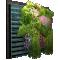 Mur Vegetal3D View