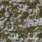 Grass Snow 2PREVIEW