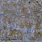 Wall Wallpaper Yellow WhiteDIFFUSE3