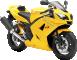 Yellow Triumph 82PREVIEW