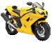 Yellow Triumph 82DIFFUSE3